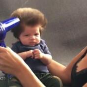 Junior, nuevo viral de internet: solo dos meses de vida ¡y un pelazo increíble!