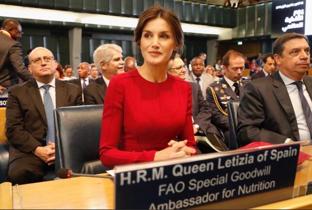 La Reina ha acudido en Roma a la reunión anual por el 'Día Mundial de la Alimentación' en calidad de Embajadora Especial de la FAO, y lo ha hecho con uno de los looks de otoño que más le favorecen. (Por ANA CALVO / Foto: Twitter Casa Real)